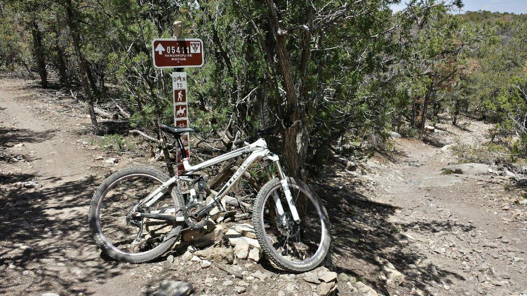 Bike + trail marker pics-birdhouse-ridge.jpg