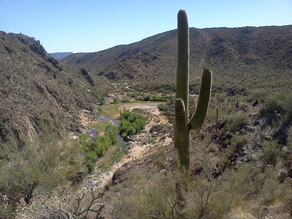 AZ Photo Friday 9-9-11-blackcanyon.jpg