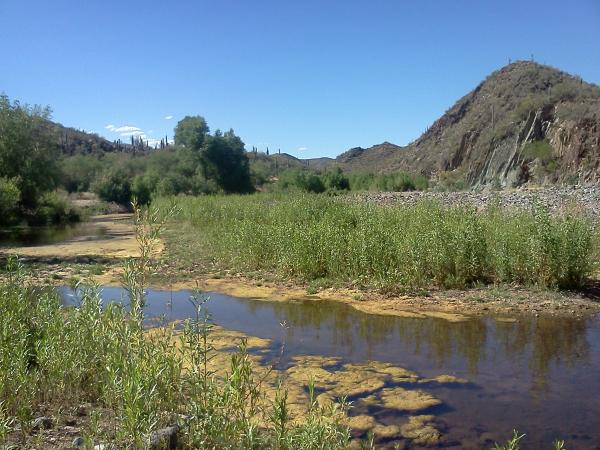 Post a picture or two of your neck of the woods-blackcanyon2.jpg