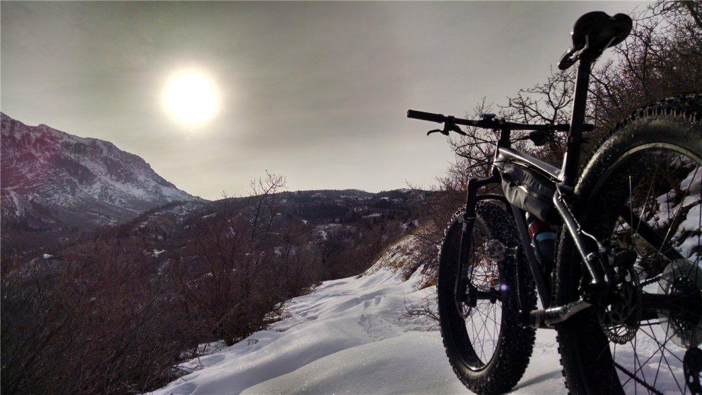 Daily fatbike pic thread-blizzard-sun-jan-19-2015-medium-.jpg
