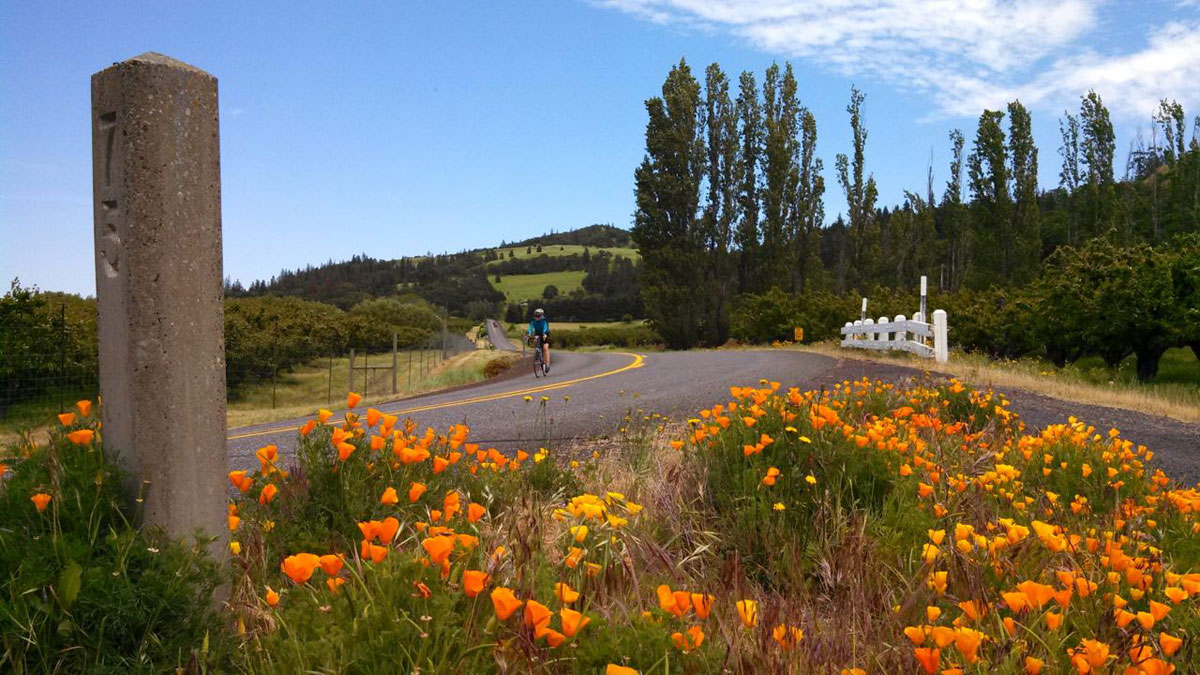 Parts of the route along Highway 30 reminded me of riding through Northern California Wine Country.