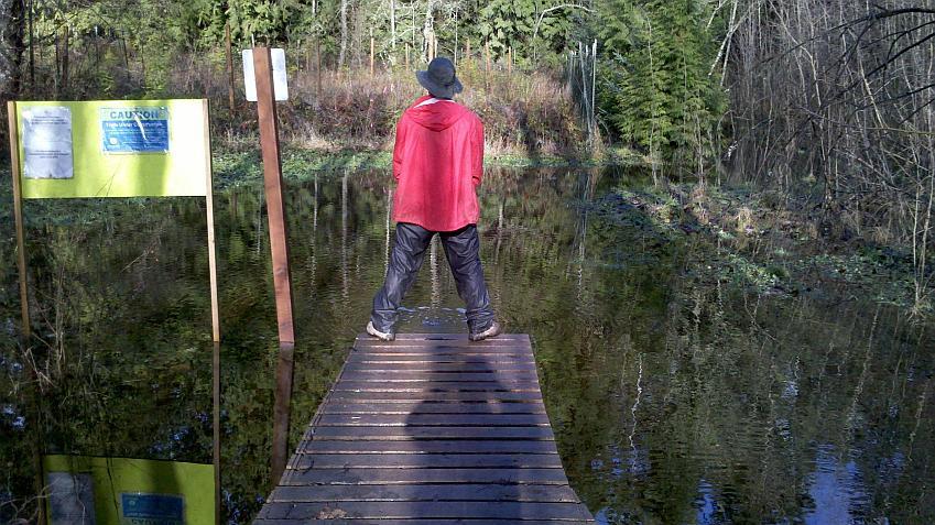 Duthie minor flooding.-boardwalkrelieflores.jpg