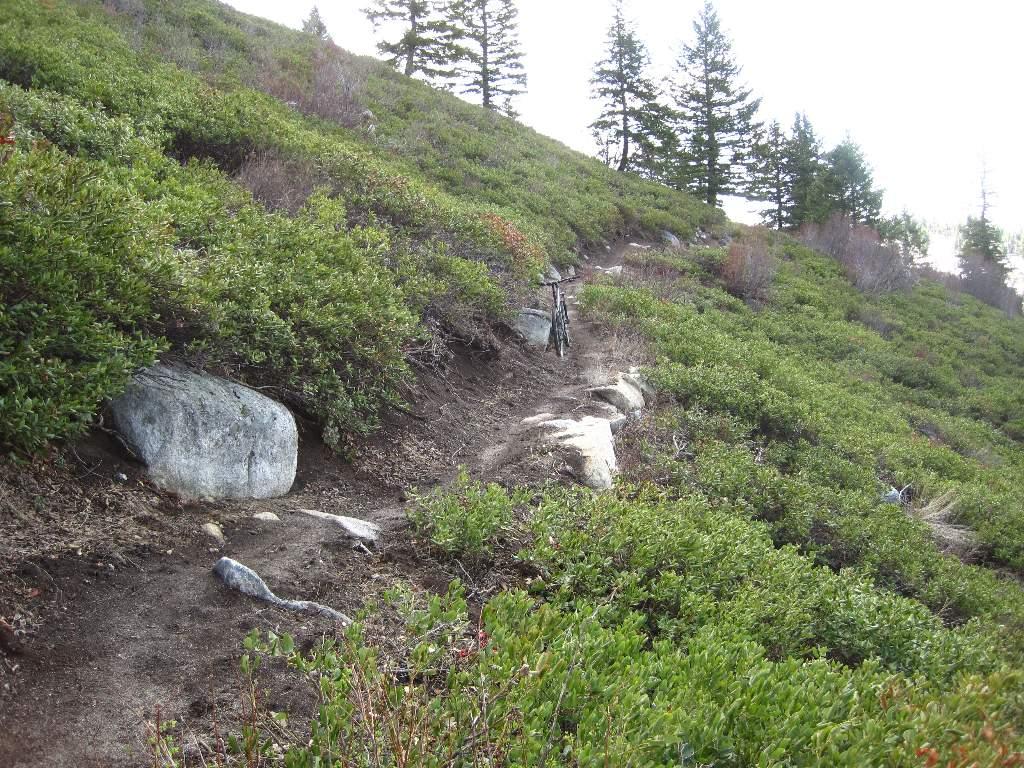 T R Bogus basin-bogus-003-large-e-mail-view.jpg