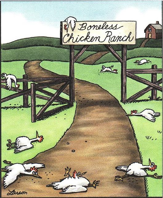 "Why don't more of the ""recreational crowd"" run flat pedals?  Road & MTB-boneless-chicken-ranch-far-side-247x300.jpg"