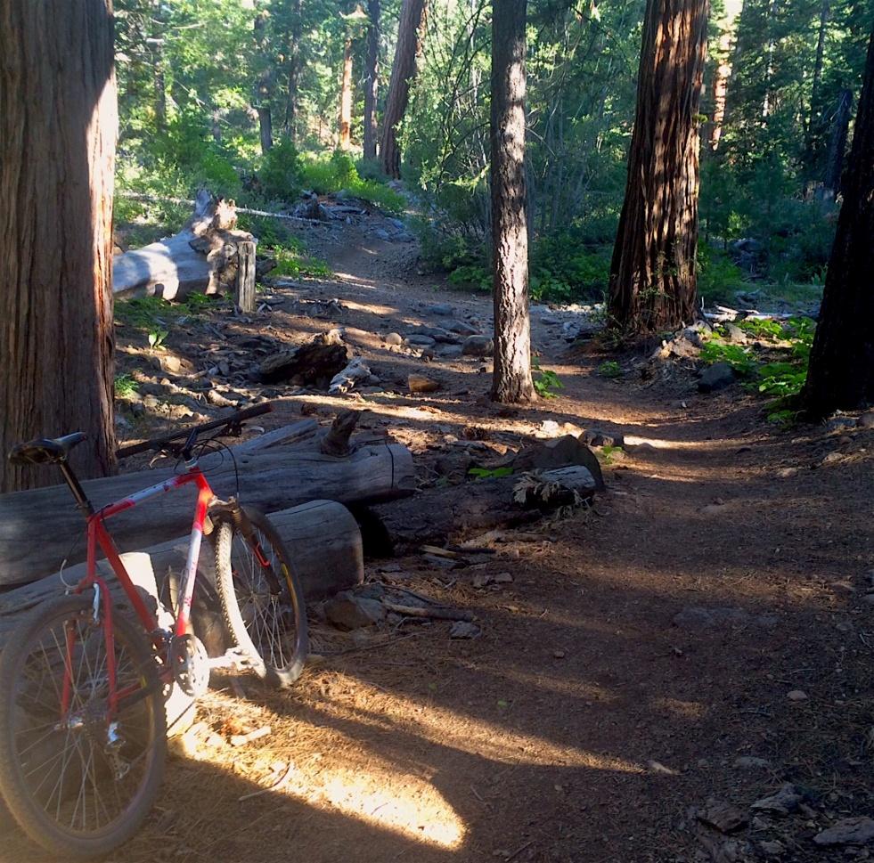 Trail Pics-bonty-curve-.jpg