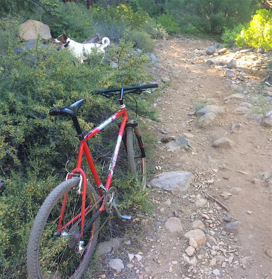 Trail Pics-bonty-rocky.jpg