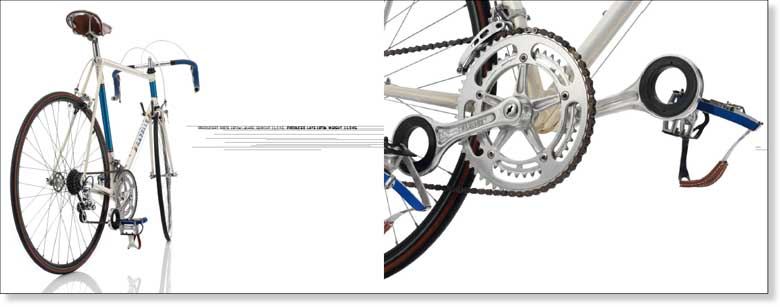 your favorite crankset-book-gazelle2.jpg