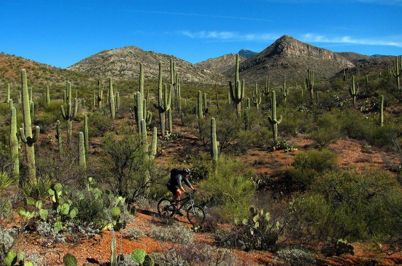 Arizona Trail Jamboree Charity Ride, January 11, 2014-bpf17_resize.jpg
