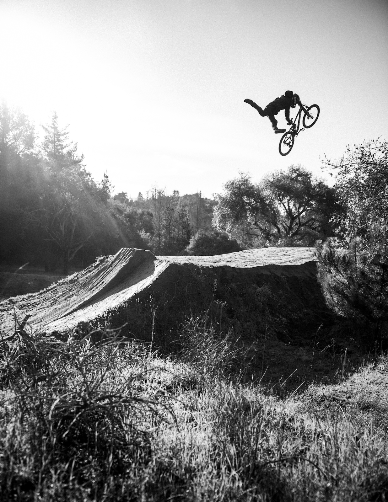 Brandon Semenuk in Simplicity. Photo Credit: Ross Measures