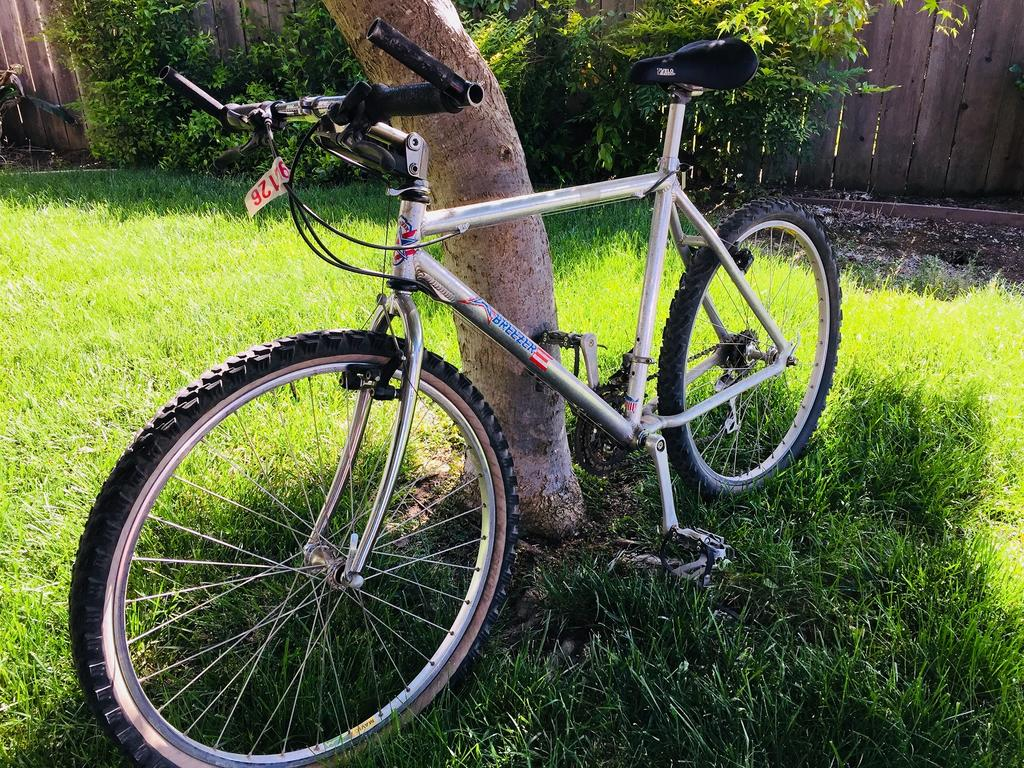 American Breezer - What to do with this bike?-breezer1.jpg