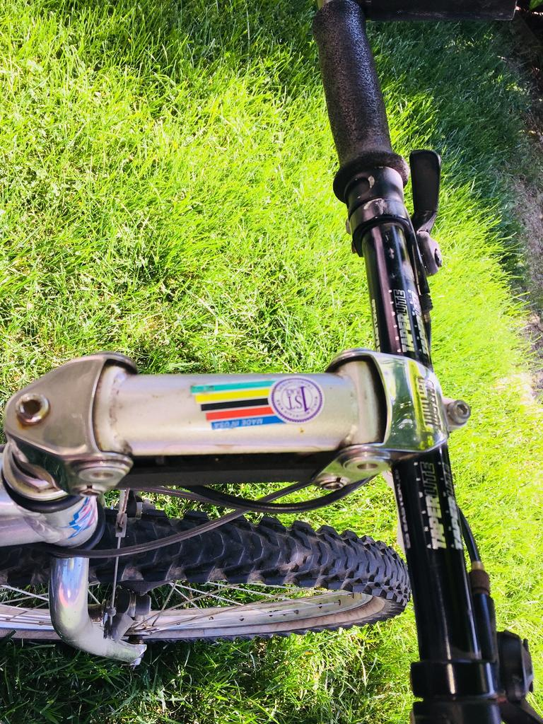 American Breezer - What to do with this bike?-breezer9.jpg