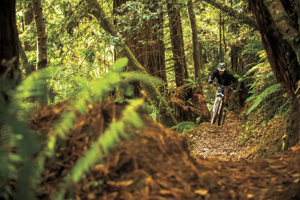 Where is the next MTB boom town?-brian.jpg