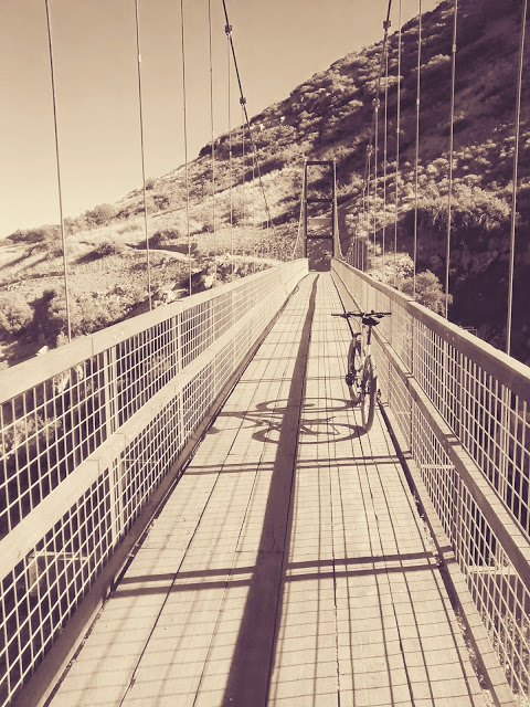 bike +  bridge pics-bridge-black-white.jpg