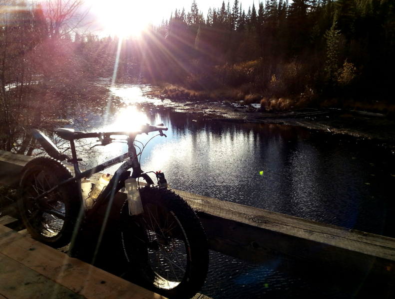 bike +  bridge pics-bridge.jpg
