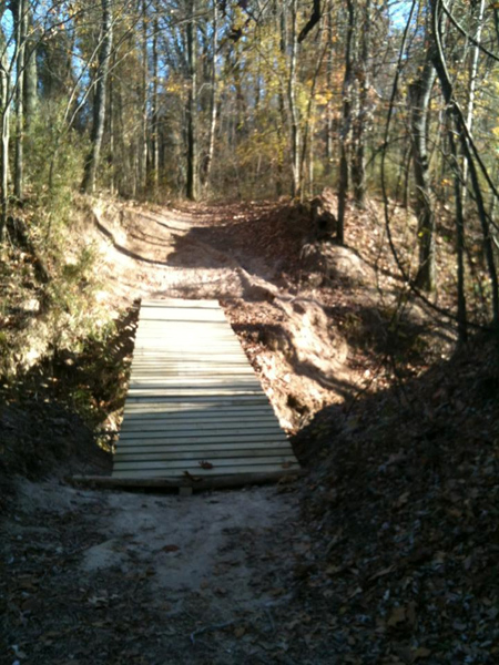 MTB bridges using steel bar joists-bridge.jpg