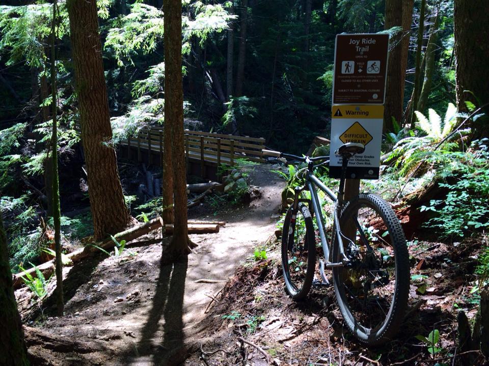 So I just rode the new Tiger Mt. trails.....-bridge.jpg