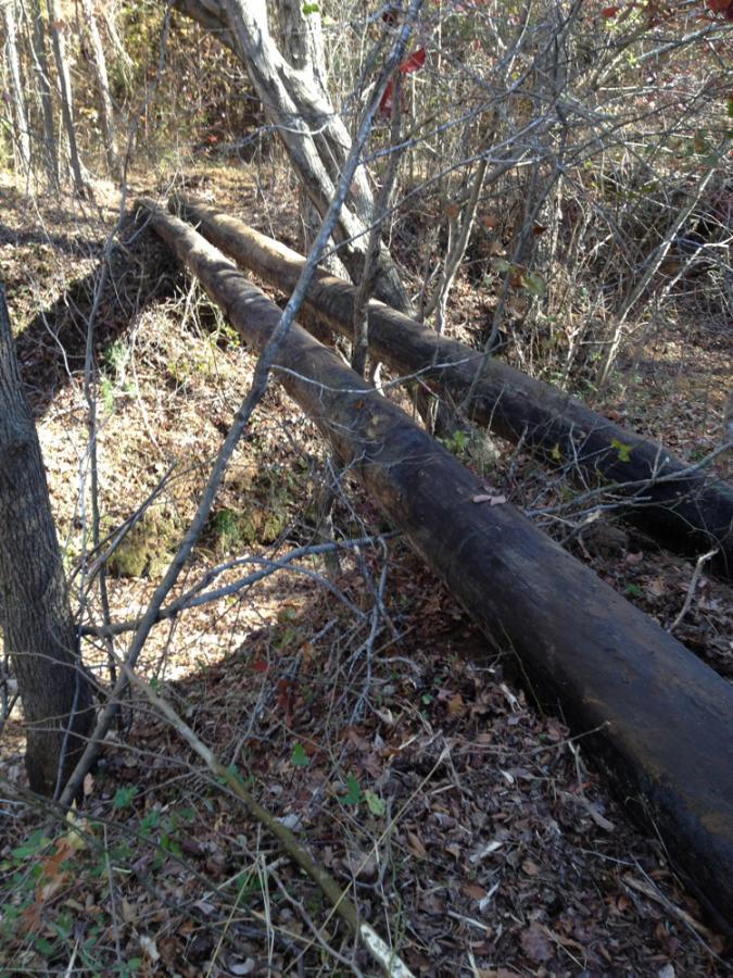Building a pole bridge-bridge-poles1.jpg