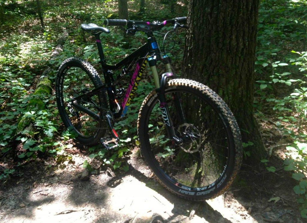 All Our Bikes-bronson1.jpg