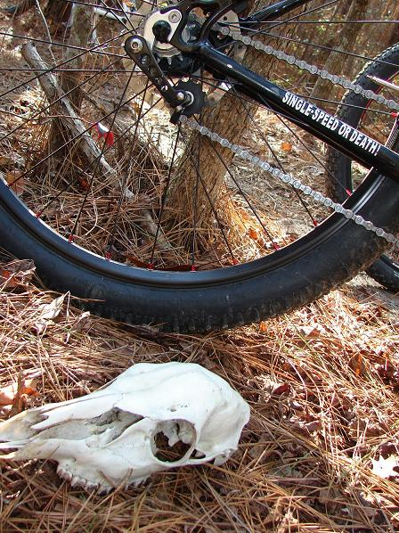 "The ""New"" Post Your Singlespeed!-brookhaven12-28-1.jpg"