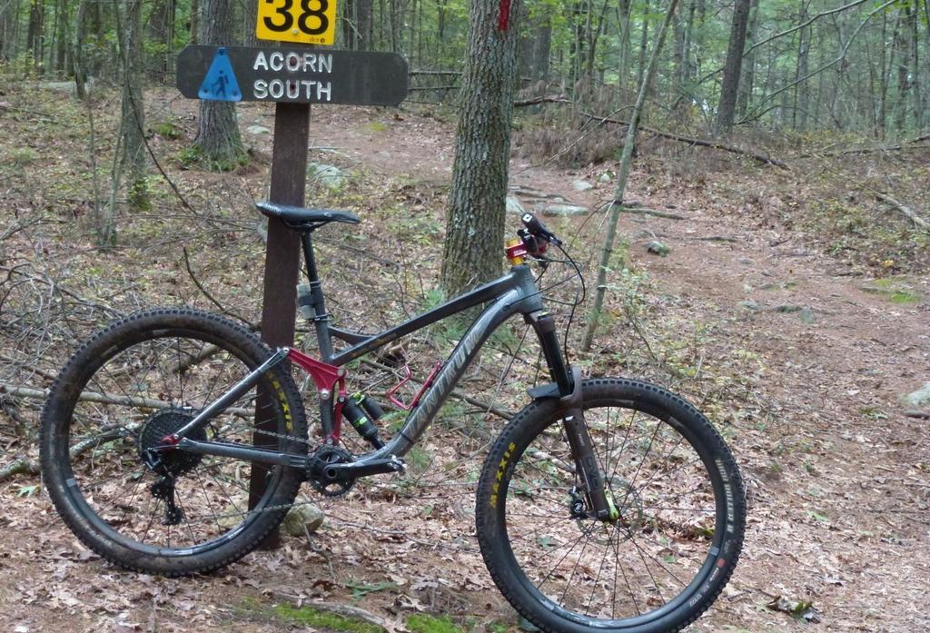 Bike + trail marker pics-bt.jpg