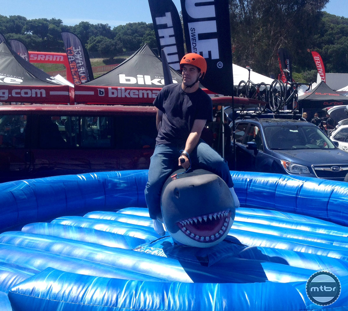 Bucking Shark