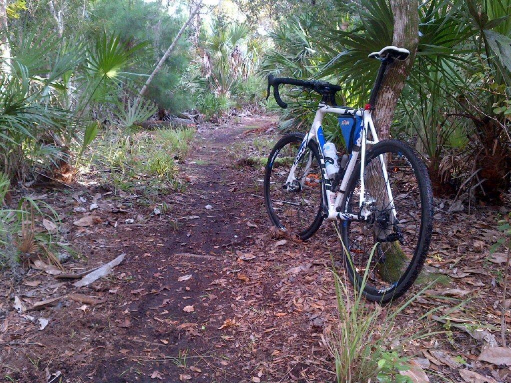 Cross Bikes on Singletrack - Post Your Photos-bulow-creek-20141009-fuji2.jpg