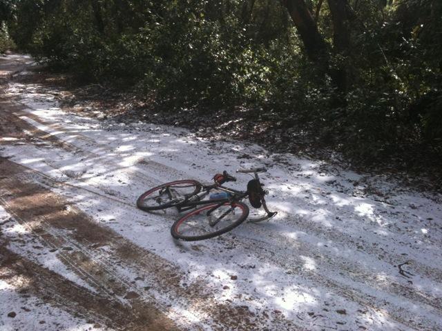 Photo Assignment: Snow-buzzardssnow1.jpg