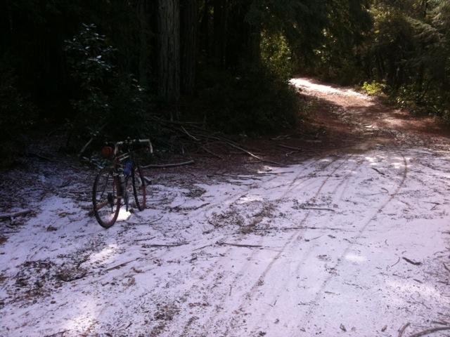 Photo Assignment: Snow-buzzardssnow2.jpg