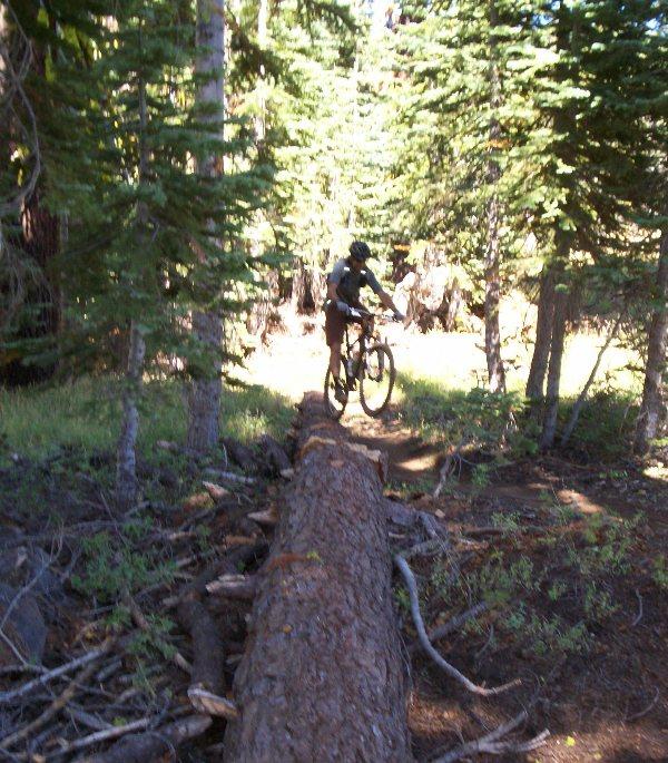 Bear Valley ride yesterday-bv-log.jpg