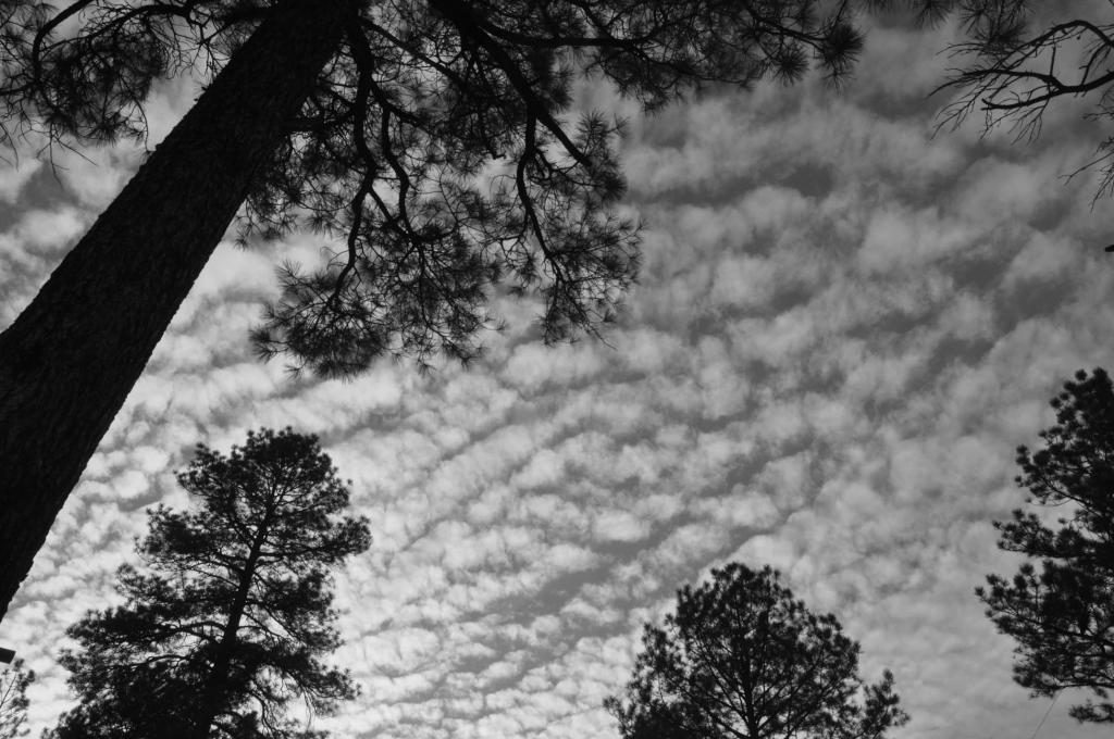 Black And White Photos Post 'Em-bw-macksky2.jpg