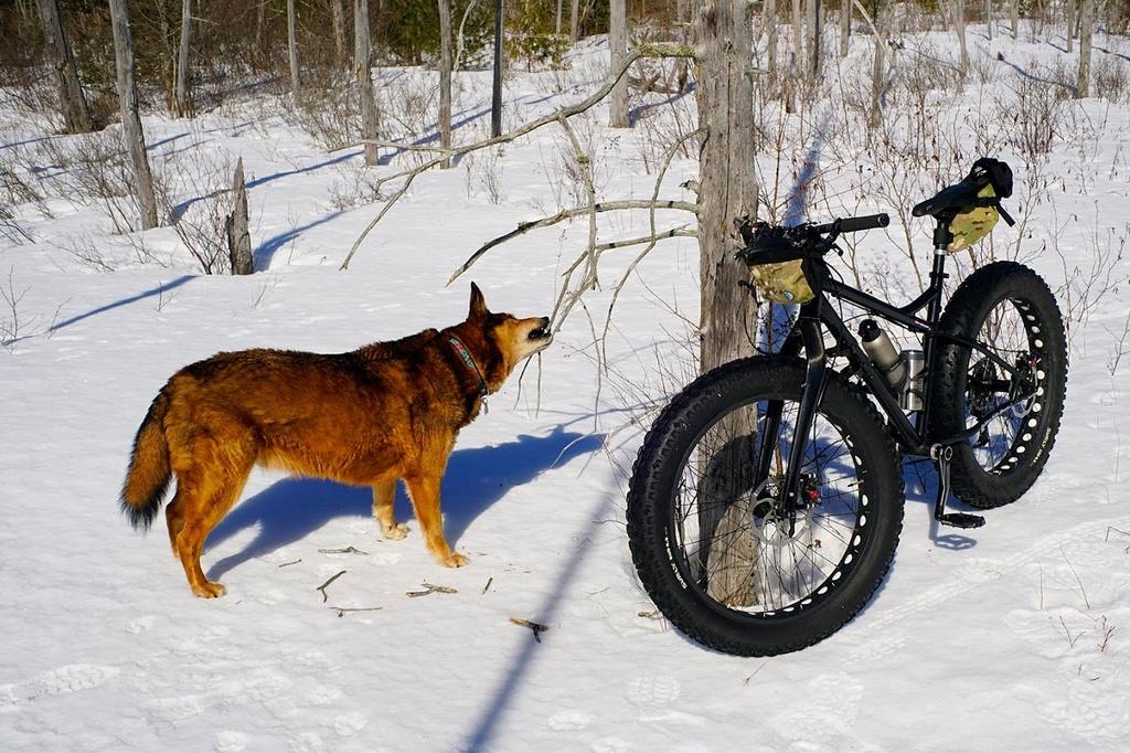 Crust Riding-bwcr6468.jpg