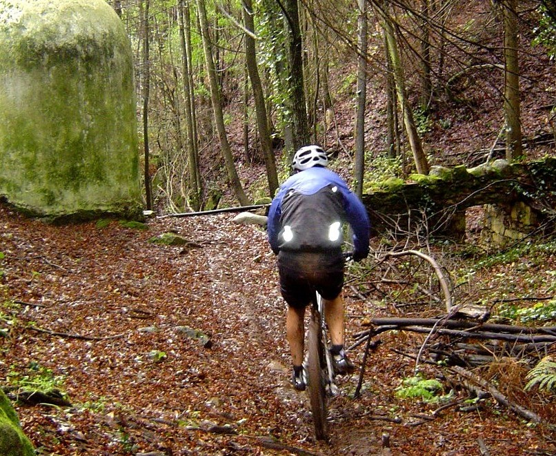 Mountain biking Portugal-c%F3pia-de-sintra-ibis-mojo-29-11-09-027.jpg