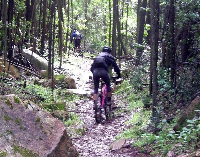 Mountain biking Portugal-c%F3pia-de-sintra-ibis-mojo-29-11-09-028.jpg