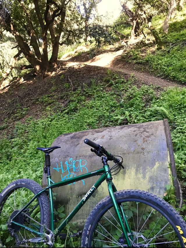 did you ride today?-c5743a0e-bc29-4012-bb8b-177f91ffc51b.jpg