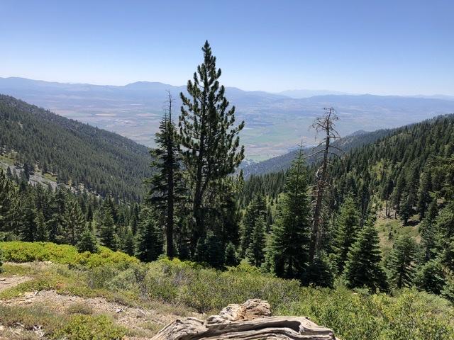 Reno Carson Trail Report Please-c61513da-6abc-4393-b7b7-35b27d09f6bc.jpeg