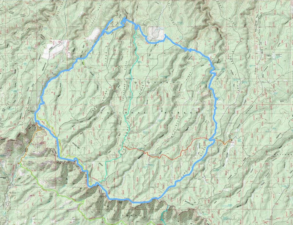 Rim Country Mountain Bike Festival weekend- pics-cabinloop-06-12-10.jpg