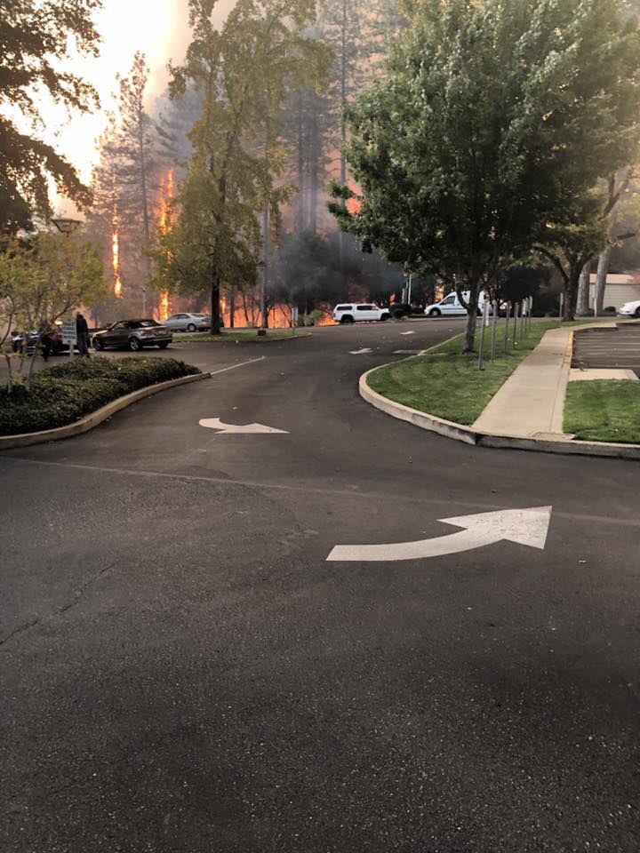 Town of Paradise being evacuated due to Camp Fire 🔥-caitlin-smith-feather-river-hospital.jpg