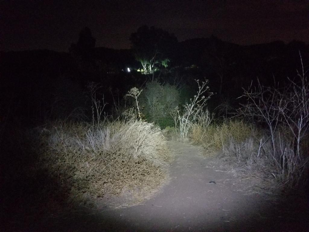 Night Riding Photos Thread-cala-night-12.26.2017-01.jpg