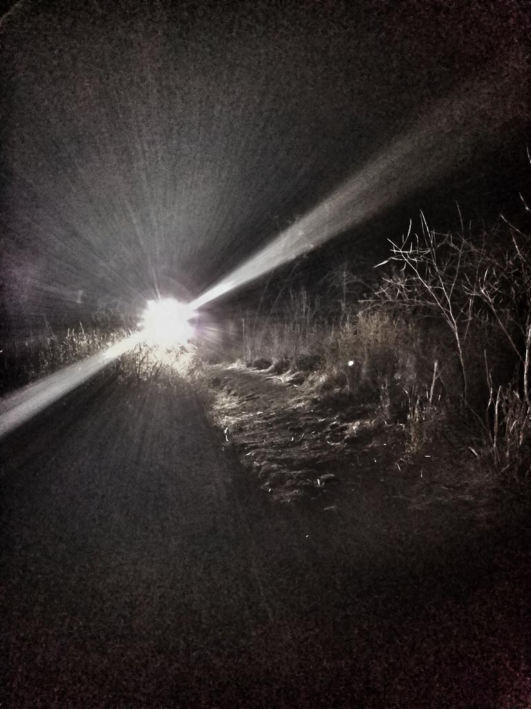 Night Riding Photos Thread-cala-night-12.26.2017-02.jpg