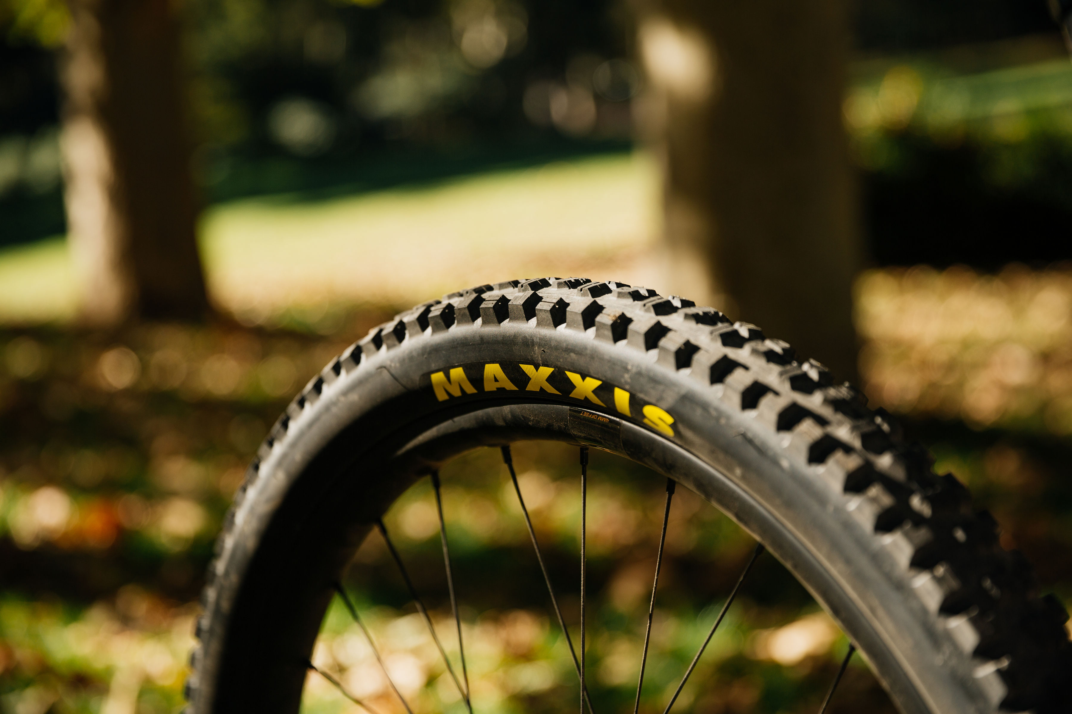 Tires that matched to your local terrain will greatly improve your ride experience. A good pair of mountain bike shoes is your primary connection to the bike. Photo by Cameron Munn