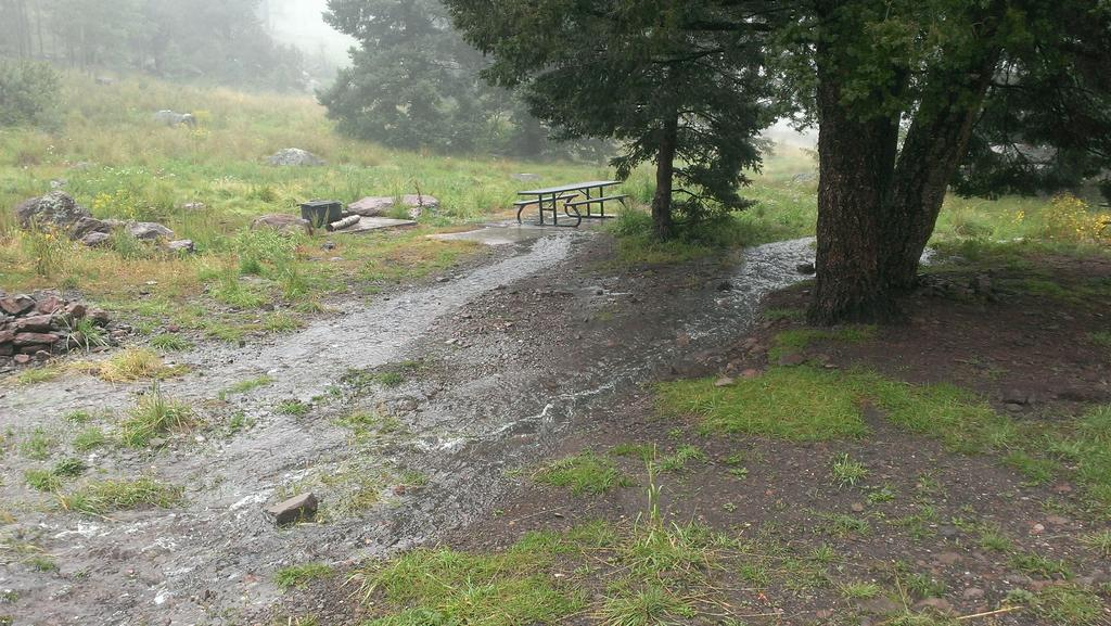When the Dirt Turns to Mud, the Tough turn to Tuff (Rainy day in L.A.)-campmayriver.jpg