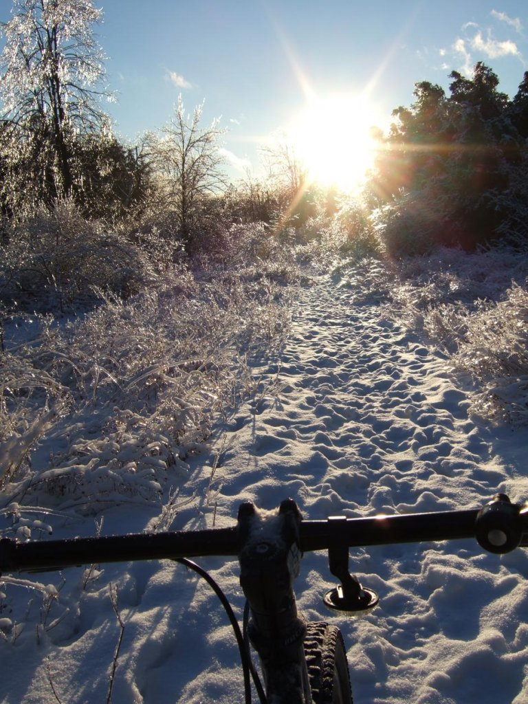 Official 2014 Winter Ice Biking Thread-canbike_puslinch_tract-122413-17.jpg