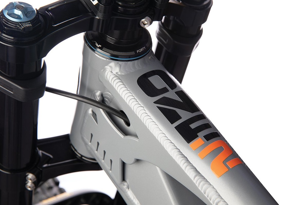 Introducing the 2020 ONE.2 - CBF 29er DH Bike-canfield-one.2-white-bg00011.jpg