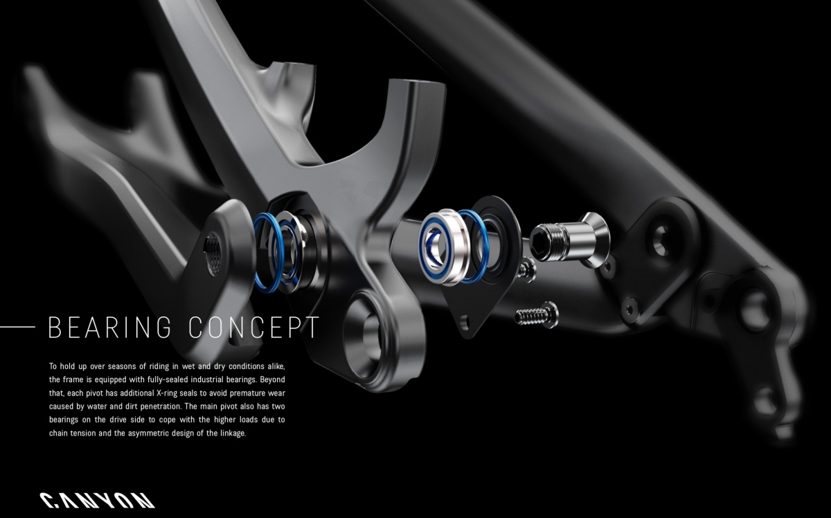 Canyon Spectral Bearings
