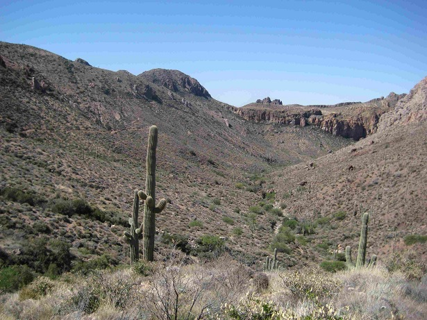 New AZT from Picket Post-canyon2.jpg