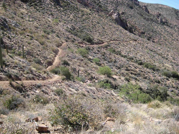 New AZT from Picket Post-canyon3.jpg