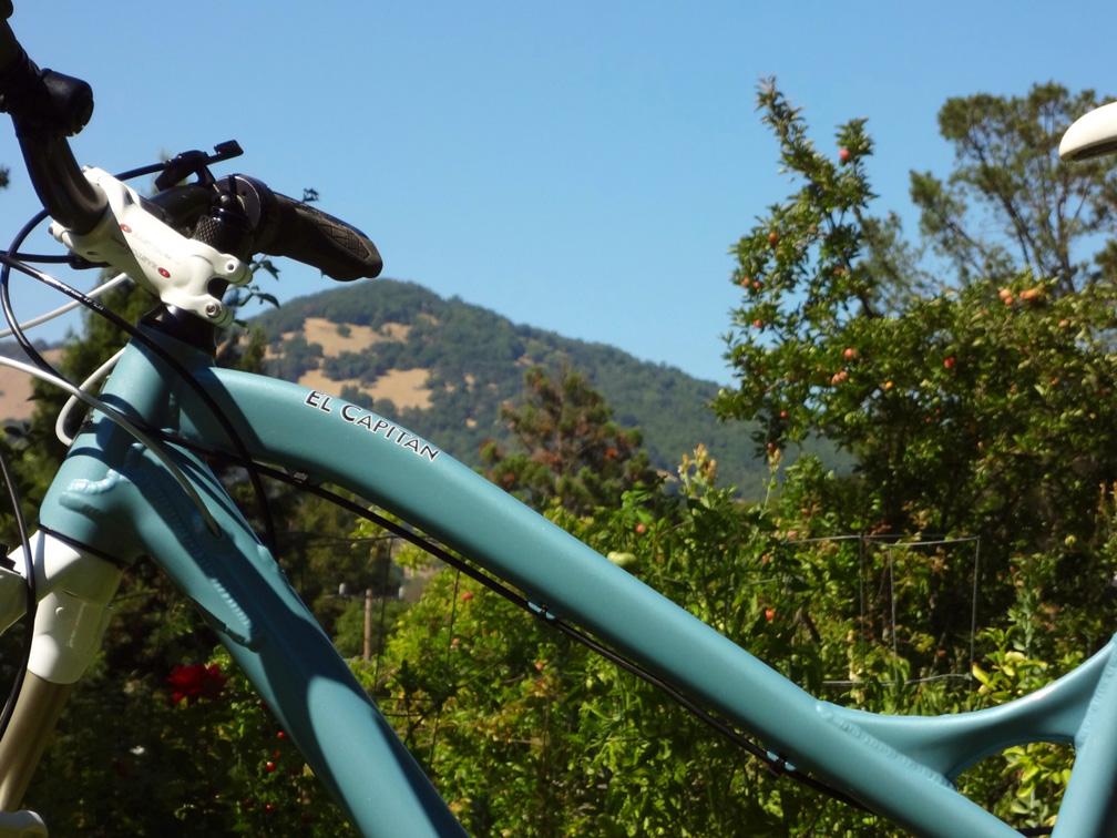 2012 Ventana El Capitan - Custom Rohloff build-cap-tt-burdel-sm.jpg