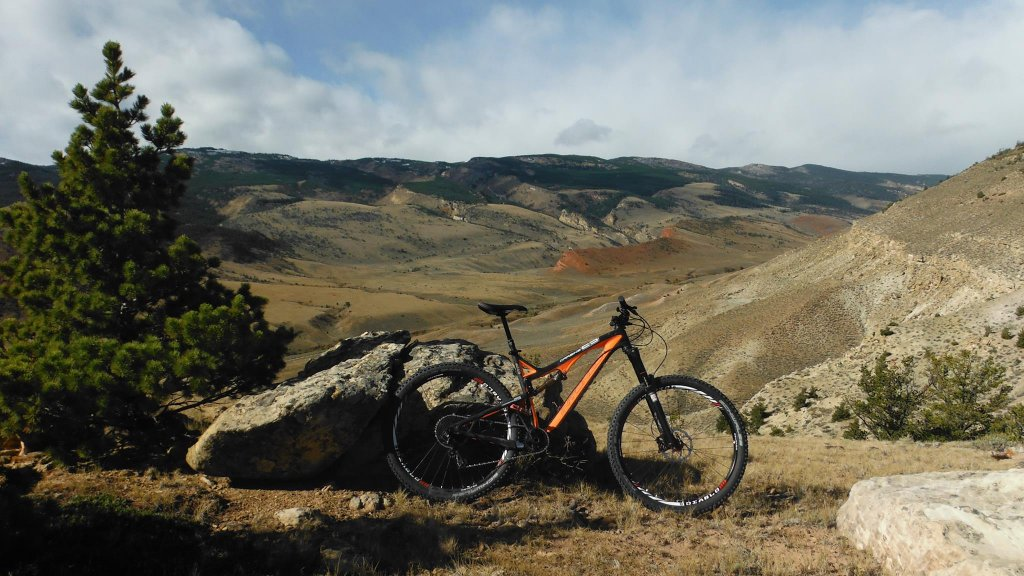 Any One Get Their Carbine 29er Yet?-carbine14.jpg