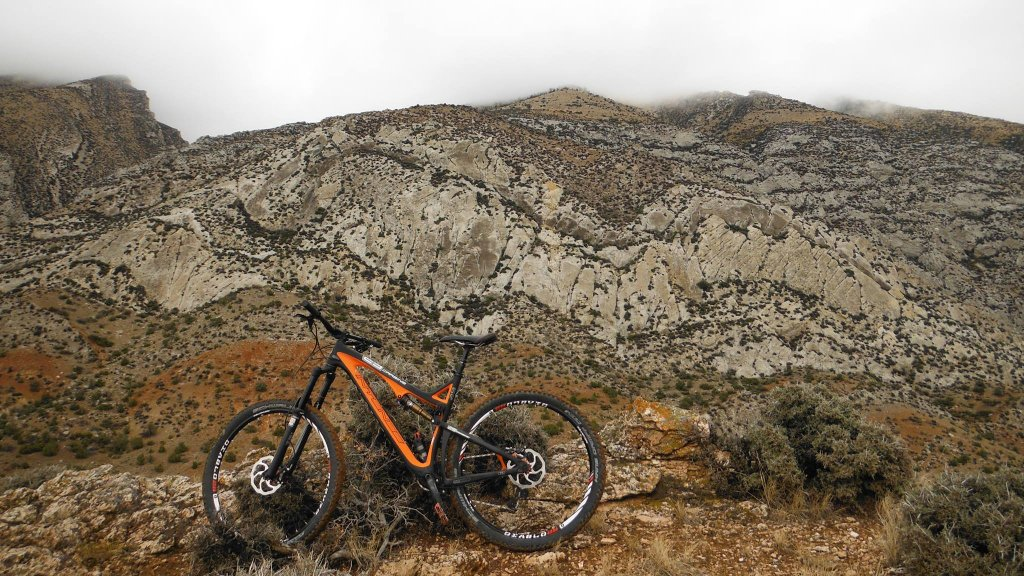 Any One Get Their Carbine 29er Yet?-carbine15.jpg