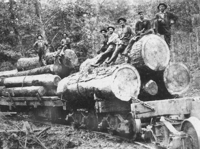 History of Pisgah's squirrel gap trail?-carr_train.jpg